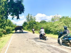 SRI-LANKA-2020